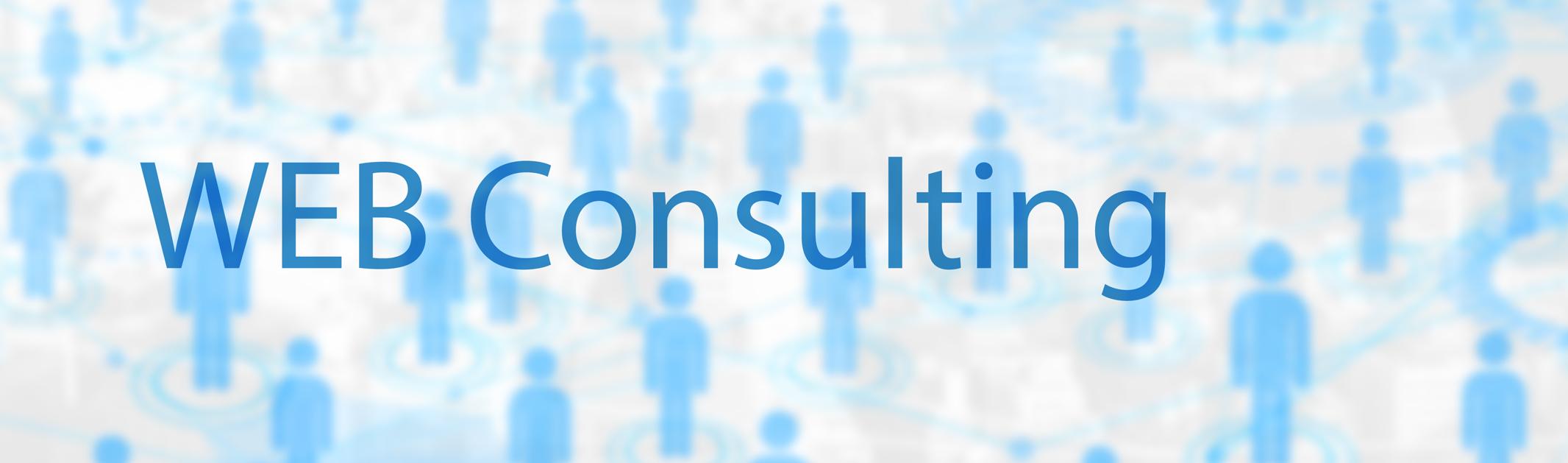 web consulting - ウェブコンサルティング